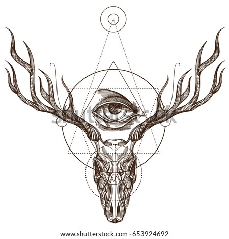 deer eye stock images royaltyfree images amp vectors