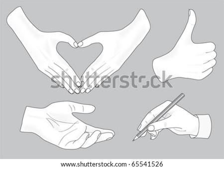 sketch of hands - stock vector