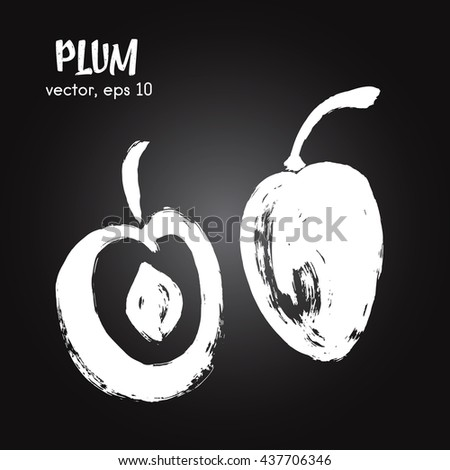 Sketched fruit illustration of plum white on blackboard. Hand drawn brush food ingredient. Vector bio and eco icon, logo design template. Concept for healthy food. - stock vector
