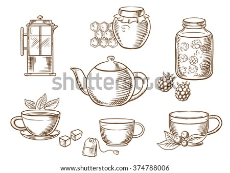 Sketched tea icons with jars, honey and raspberry jam, french press, various teacups with tea bag, sugar cubes, fresh leaves of mint and cowberry with porcelain tea pot. Vector sketch - stock vector