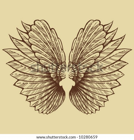 Sketched Wings - stock vector
