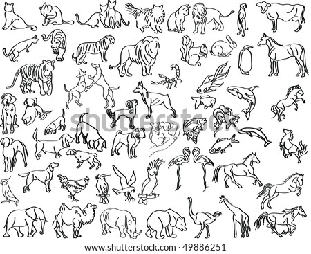 Sketches of animals - stock vector