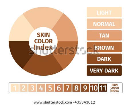 Melanin stock images royalty free images vectors shutterstock skin color index infographic vector 3 chart dark to light ccuart Image collections