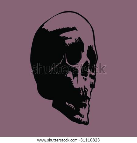 skull b - stock vector