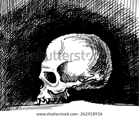 Yorick Skull Drawing Skull Graphic Drawing