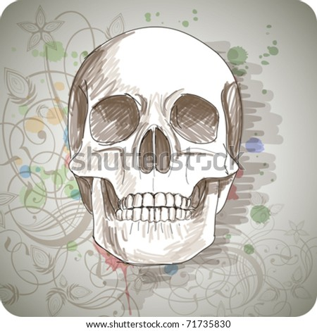 Skull sketch & floral calligraphy ornament - a stylized orchid, color paint background - stock vector