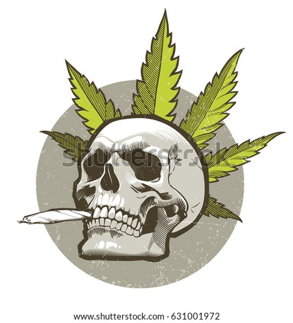 Skull with cigarette and marijuana leaves on the background. Vector illustration. .eps10
