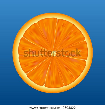 Sliced orange half showing detail on a blue background. Vector. - stock vector