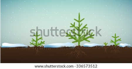 Small Christmas trees or young fir tree forest growing on soil in winter season, vector - stock vector