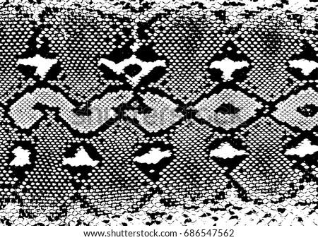Snake Skin Pattern Stock Images Royalty Free Images