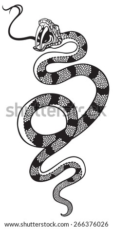snake with open mouth , black and white tattoo illustration