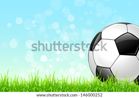 Soccer Ball on Green Grass and Blue Sky Background
