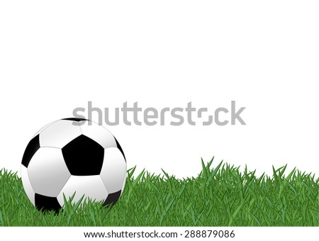 Soccer ball on the yard with white background , EPS10 - stock vector