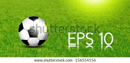 Soccer banner - football on grass texture - stock vector
