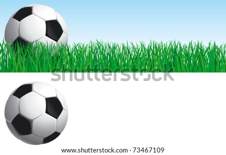 Soccer set. Vector banner of soccer ball on green grass, and soccer ball  isolated on white background