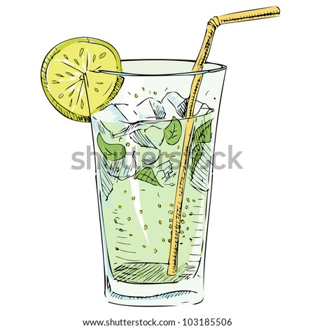 Soda glass with citrus segment and ice cubes. Hand drawing colorful sketch vector illustration - stock vector