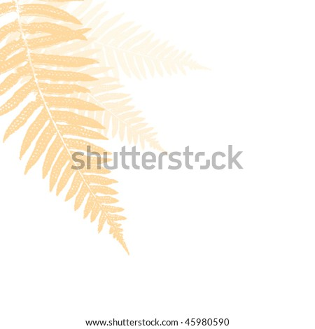soft fern design element - stock vector
