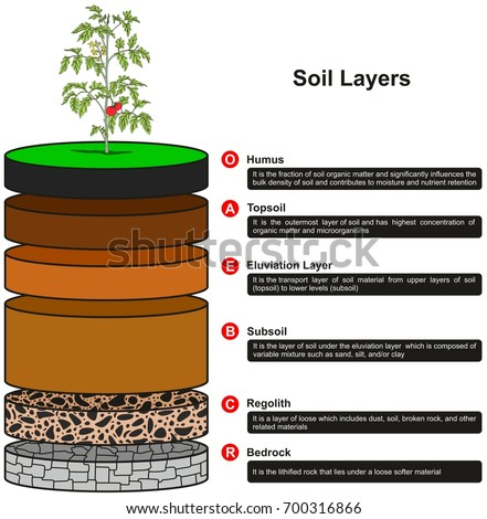 Soil layers stock images royalty free images vectors for Where to find soil