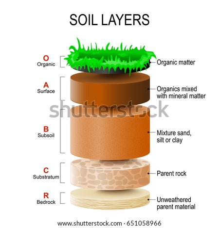 Soil layers stock images royalty free images vectors for Mineral soil definition