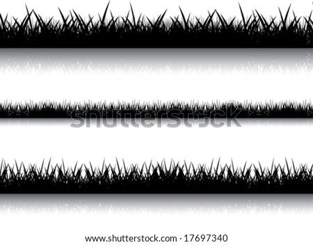 Some variants of an illustration with the image of a black grass with reflection