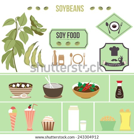 Soybeans. Soybeans. Meals. Soy products - stock vector