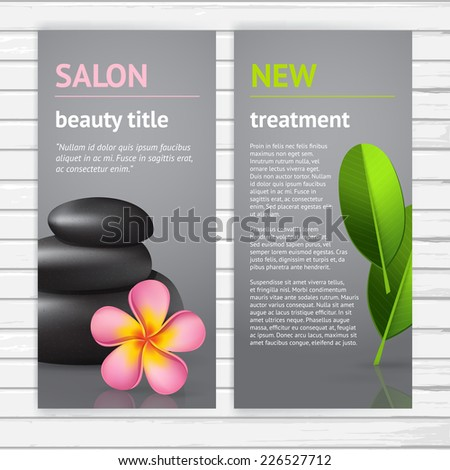 Vector Modern Spa Flyer Design Template Stock Vector