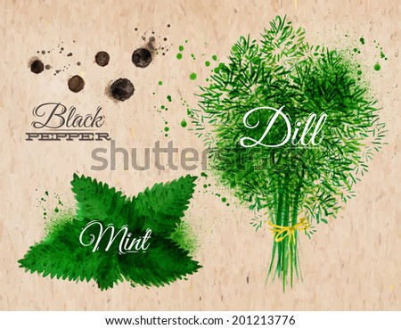 Spices herbs set drawn watercolor blots and stains with a spray black pepper, mint, dill on kraft paper - stock vector