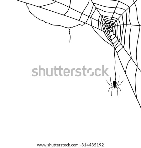 Spider and web isolated on white, vector illustration - stock vector