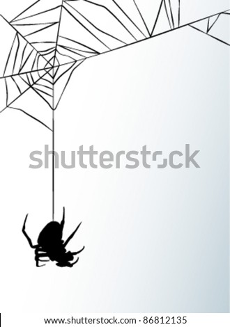 Spider web - stock vector