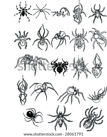 spiders Collection - stock vector