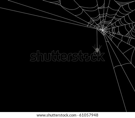 Spiderweb and spider on black background - stock vector
