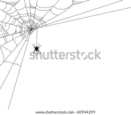 Spiderweb and spider on white background - stock vector