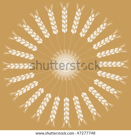 spiked grains background - stock vector