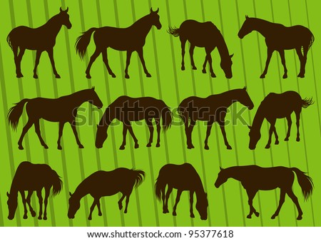 Sport horse silhouettes illustration collection background vector - stock vector