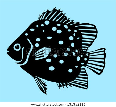Spotted Scat Fish - stock vector