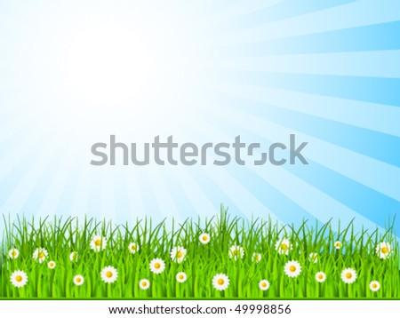 spring background - vector illustration - stock vector