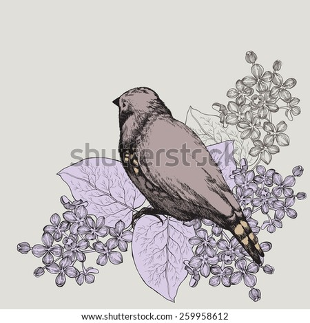 Spring background with bird and a lilac, hand-drawing. Vector illustration. - stock vector