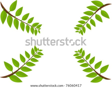 Spring branches frame. vector illustration background