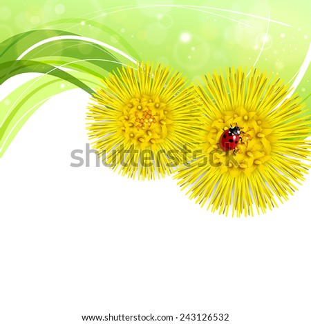 Spring floral background with coltsfoot and ladybug - stock vector