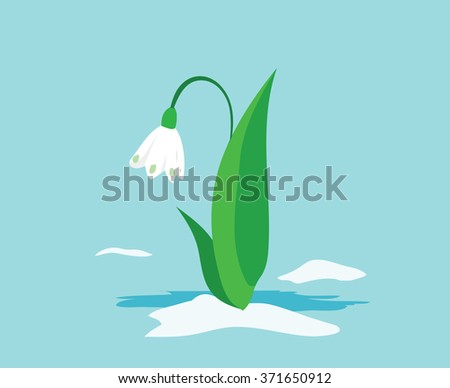 spring flowers snowdrops peeping out from under the last snow. Vector. Stock illustration