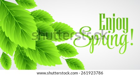 Spring fresh green leaves. Vector illustration EPS10 - stock vector