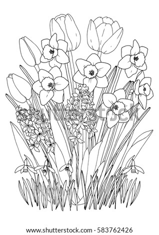spring garden flowers coloring page with daffodils tulips hyacinth and snowdrops printable a4 - Spring Garden Coloring Pages