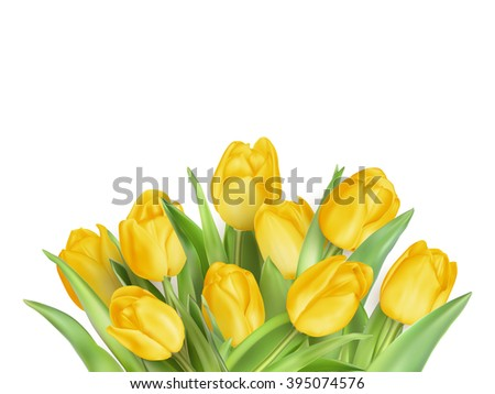 Spring Natural Frame with Yellow Tulips Flowers. EPS 10 vector file included