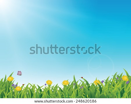 Spring / Summer Scene, with grass, flowers, blue sky, butterflies and ladybugs and lots of copy space - stock vector