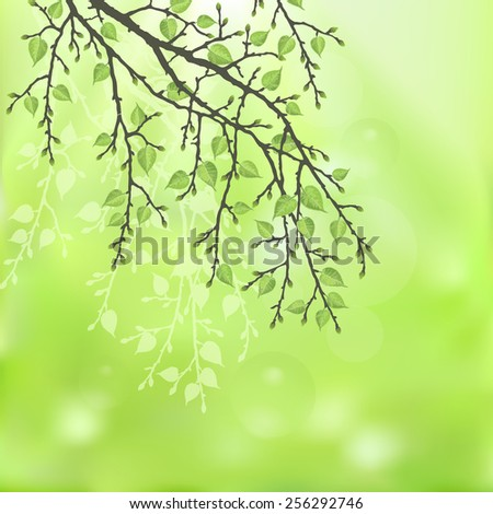Spring twig tree on a green background. Spring holiday card with place for text. Stylish fashion background - stock vector