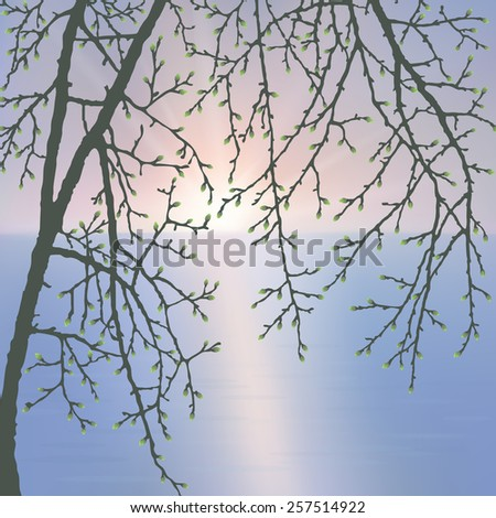 Spring twig tree. Stylish spring background with a place for text, good for cards, invitations - stock vector