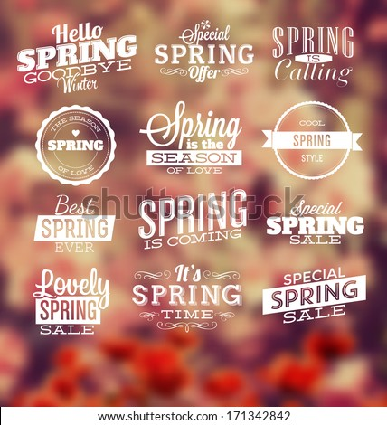 Spring Typographic Design Set - stock vector