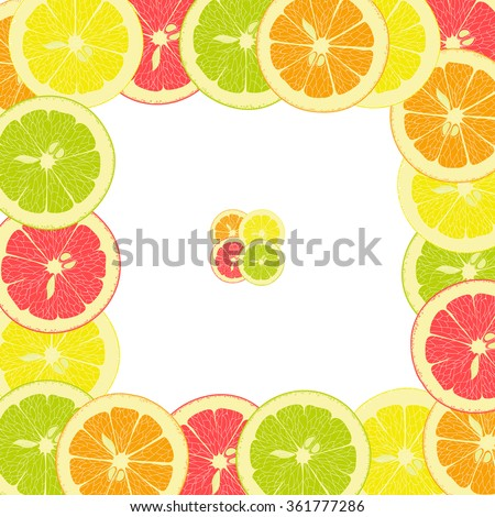 square frame from pieces of lemon, orange, lime, grapefruit on a transparent background