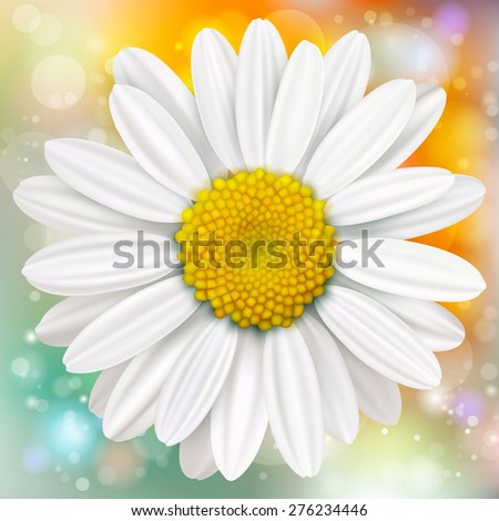 Square head on shot of white daisy with green blurred background - stock vector