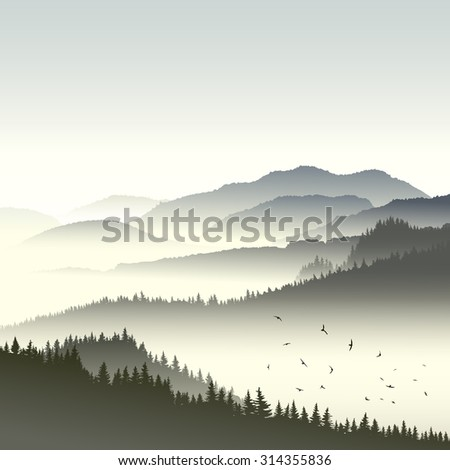 Square illustration morning misty coniferous forest on hills in fog with flock of birds. - stock vector